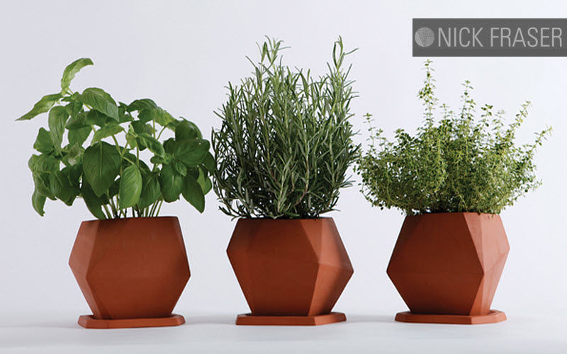 NICK FRASER Pot de fleur Pots de jardin Jardin Bacs Pots  |