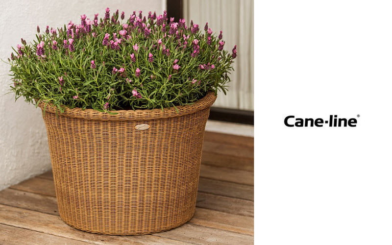 CANE-LINE Pot de jardin Pots de jardin Jardin Bacs Pots   