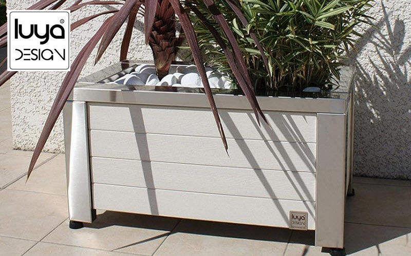 LUYA DESIGN Bac d'orangerie Bacs Jardin Bacs Pots  |