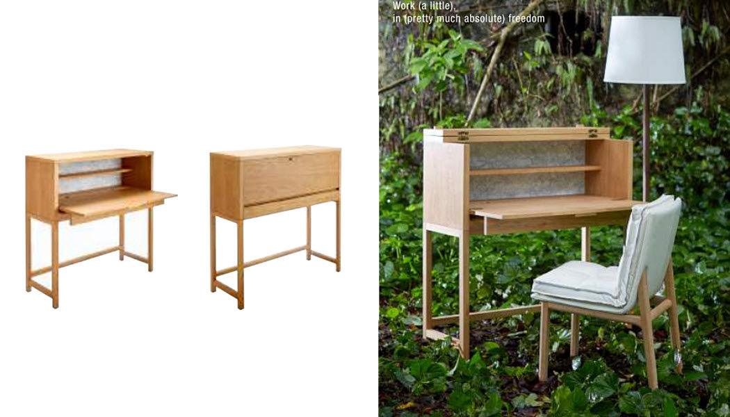 Bleu Nature Bureau cabinet Bureaux et Tables Bureau  |