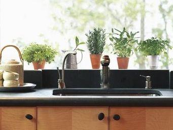 Nouvelles Images - sticker fenêtre herbes aromatiques - Sticker