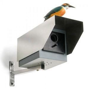 DONKEY PRODUCTS - maison pour oiseaux caméra de surveillance - Maison D'oiseau