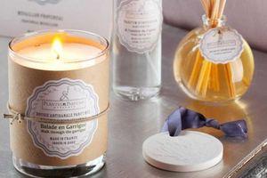 PLANTES & PARFUMS DE PROVENCE -  - Bougie Parfumée