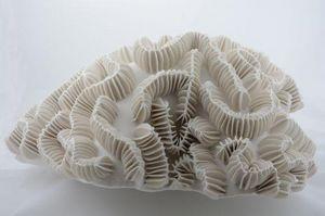 MARIK KORUS - meandrina - Sculpture