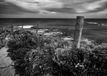ALEX ARNAOUDOV - pacific fence - Photographie