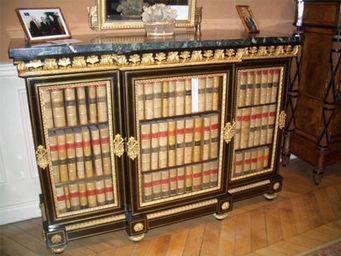 Camille Burgi -  - Bibliothèque