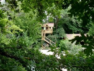 DANS MON ARBRE -  - Cabane Dans Les Arbres