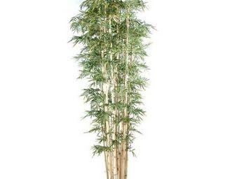 Deco Factory - grand bambou artificiel bali - Arbre Artificiel