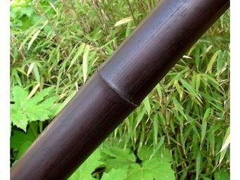 Deco Factory - canne de bambou chocolat ht 200 cm � 10 cm - Arbre Artificiel