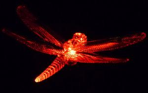 FEERIE SOLAIRE - pic solaire libellule lumineuse 5 couleurs 76cm - Photophore Pique Jardin