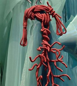 Declercq Passementiers - corail thomas boog - Embrasse