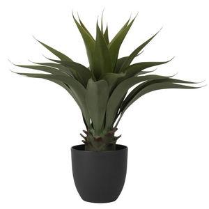 MAISONS DU MONDE -  - Plante Artificielle