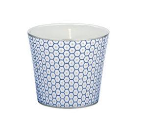 Raynaud - trésor bleu - Bougie Parfumée