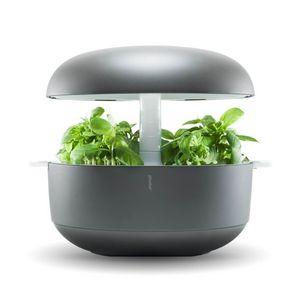 PLANTUI -  - Potager D'intérieur