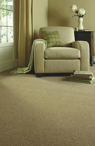 Axminster Carpets - devonia plains 40oz - Moquette