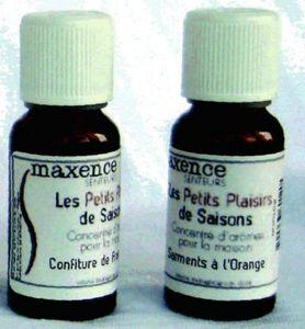 MAXENCE - concentré 20ml, bouchon sécurité - Parfum D'intérieur