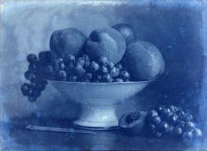 LINEATURE - positif - corbeille de fruits au couteau - 1855? - Photographie