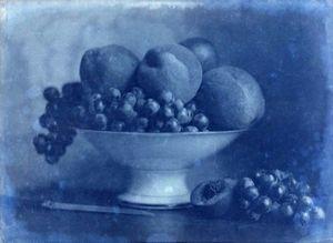 LINEATURE - positif - corbeille de fruits au couteau - 1855? - Photographie