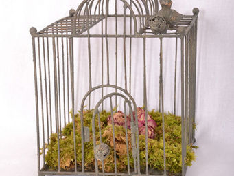 Coquecigrues - cage verri�re - Cage � Oiseaux