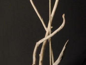 Coc'Art Créations -  - Lampe À Poser