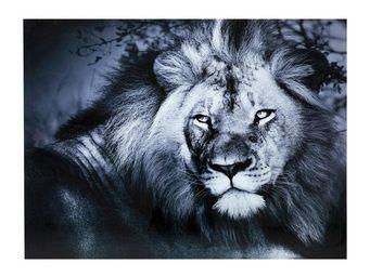 Kare Design - tableau en verre lion king 120x160 - Tableau Décoratif