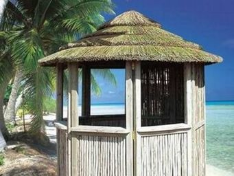 Casa-Africa - tiki hut zulu en roseau du cap de 2,8 m - Paillote