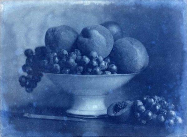 LINEATURE - Photographie-LINEATURE-Positif - Corbeille de Fruits au couteau - 1855?