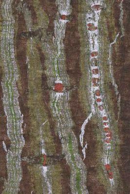 Codimat Co-Design - Moquette-Codimat Co-Design-Au coeur de l'arbre Bodhi Tree 7