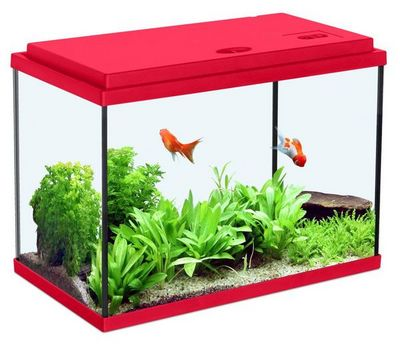 ZOLUX - Aquarium-ZOLUX-Aquarium enfant rouge cerise 12.5L