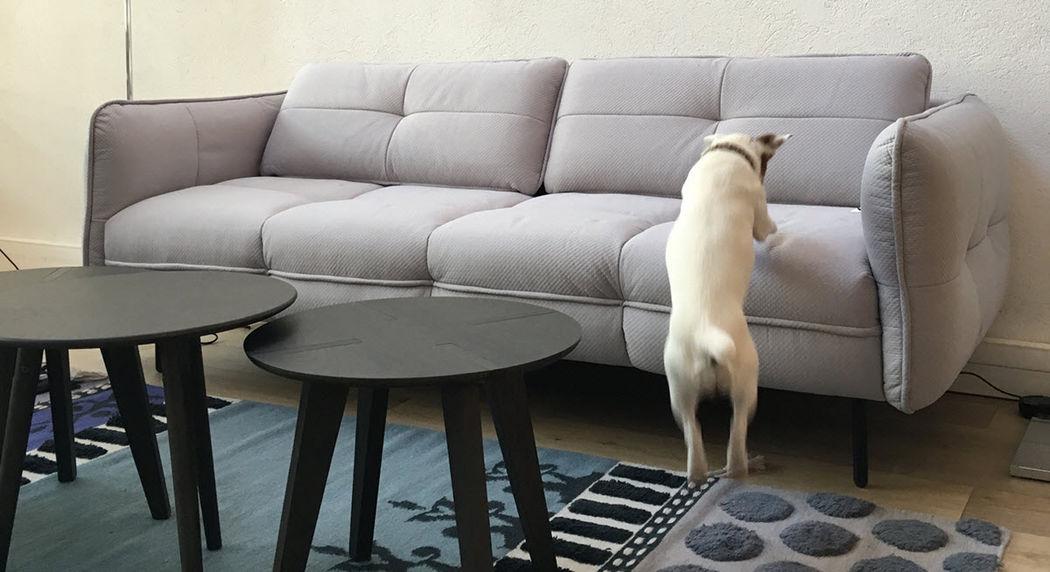 ALTASSINA 4-seater Sofa Sofas Seats & Sofas  |