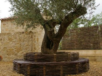 Atelier CHATERSèN -  - Circular Tree Bench