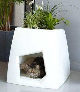 Pousse creative -  - Interior Windowbox