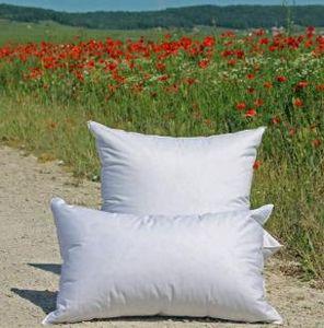 Lamy - boréal prestige - Pillow