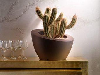 Lyxo by Veca - ciotola genesis inclinata - Flower Pot