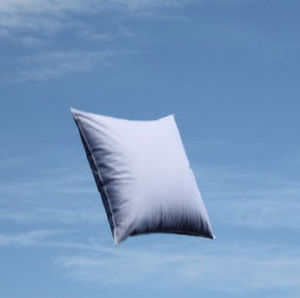 Lamy - boréal sérénité naturel - Pillow