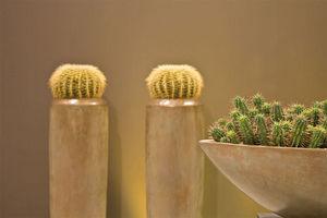 Fleur ami -  - Jar