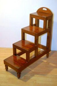 Mobildoc -  - Library Step Ladder