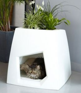 Pousse creative -  - Interior Windowbox