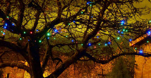 FEERIE SOLAIRE - guirlande solaire multicolore 100 leds 11,8m - Lighting Garland
