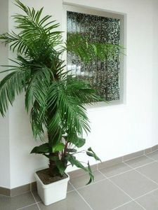AQUALIA -  - Water Feature Wall