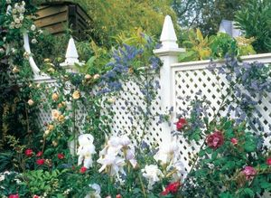 Stuart Garden Architecture -  - Fence With An Openwork Design