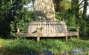 Gaze Burvill -  - Circular Tree Bench