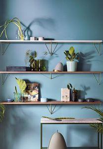 MAZE Interior -  - Shelf