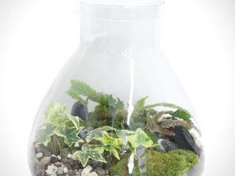 GREEN FACTORY - bulb - Terrarium Garden Under Glass