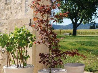 DEROMA France - essentiel - Tree Pot