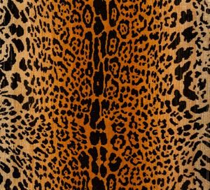 Luigi Bevilacqua - leopardo - Fabric By The Metre