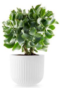 EVA SOLO - -legio nova-- - Plant Pot Cover