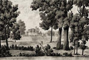 Ananbô - saint martin terre brune - Panoramic Wallpaper
