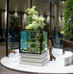 Atelier Paul Louis Duranton - posidonia - Aquarium