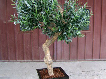 Decors Nature -  - Artificial Tree
